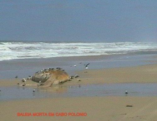baleiacabo