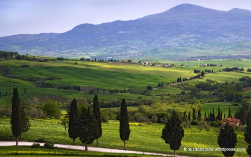 this beautiful scene is in the Val d'Orcia in Tuscany (Toscana), Italy