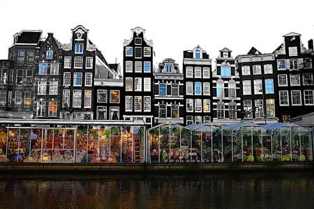 mercado-flotante-de-flores-Amsterdam