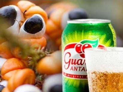 guarana-1358192587556_800x600