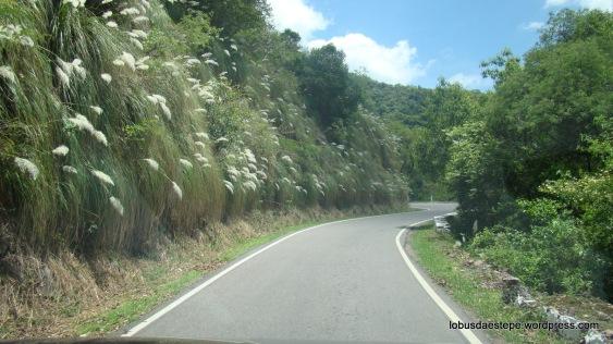 Ruta 9 entre Salta e Jujuy